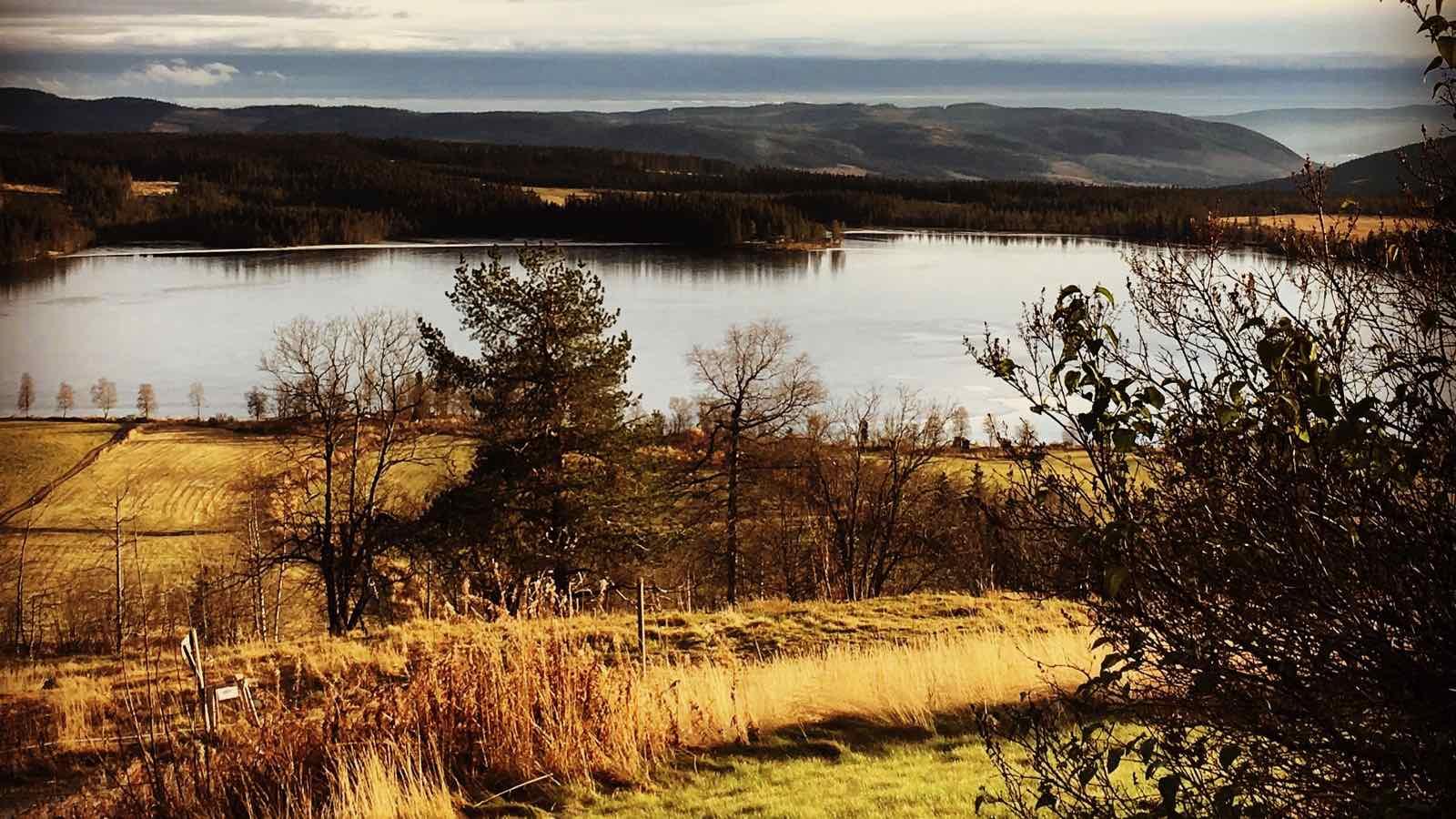 Utsikt ved Ullsjøen